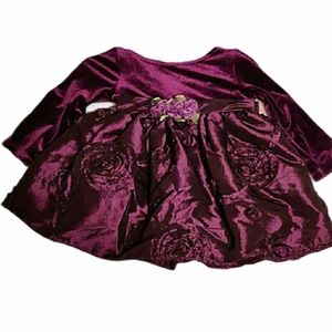 Toddler Holiday/Special Ocassion Purple Dress